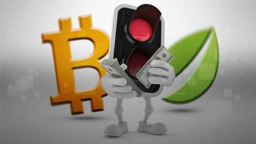 Bitfinex transactions
